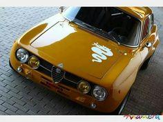 いい色だナー  Alfa Romeo GTA