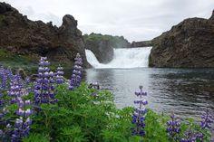 Iceland Pt.5 by Tiffany Farrant-Gonzalez - Exposure