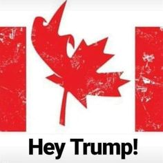 New memes funny hilarious trump ideas Canadian Memes, Canadian Things, I Am Canadian, Canadian History, Canadian Humour, Canada Funny, Canada Eh, Canada Jokes, Toronto Canada