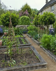 Garden Designer Justin Spink