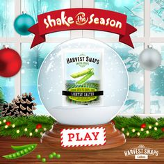 Snack lovers favorite holiday tradition is back! Play for a… Harvest Snaps, Happy Kwanzaa, Happy Hanukkah, Instant Win Games, Holiday Traditions, Favorite Holiday, Holiday Parties, Holiday Recipes, Giveaway