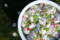 Picnic, Anna, Potato Salad, Picnics
