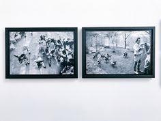 Framing for Olly & Suzi: Mkomazi Wild Dog Exhibition - Leica UK Metro Pictures, Wild Dogs, Leica, Picture Frames, Ideas, Portrait Frames, Picture Frame, Thoughts, Frames