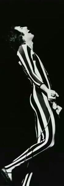 Lovely Freddie