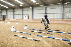 How to shorten your horse's stride with poles