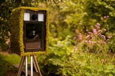 The London Lightbox Wedding Photobooth Moss photo booth Forest Wedding