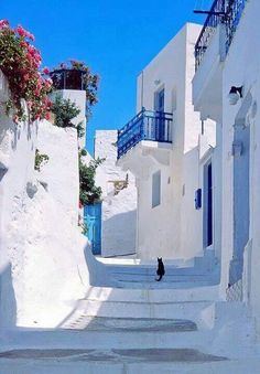 Pure white in island, Beautiful Islands, Beautiful World, Beautiful Places, Places Around The World, Around The Worlds, Places To Travel, Places To Visit, Greek Isles, Greece Islands