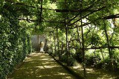 An immensely long Wisteria-shaded pergola found in the garden of Villa Astor. Paris Destination, Destination Wedding Planner, Most Beautiful Gardens, Amazing Gardens, Italian Garden, Pergola Designs, Amalfi Coast, Wisteria, Garden Design