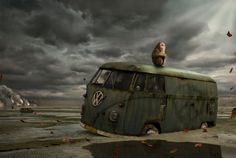 Volkswagen Animal Photography, Volkswagen, Painting, Animals, Hermes, Art, Animais, Craft Art, Animales