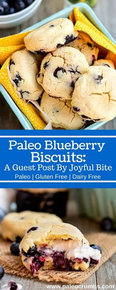 Paleo Blueberry Biscuits: A Guest Post By Joyful Bite - on Paleo Crumbs