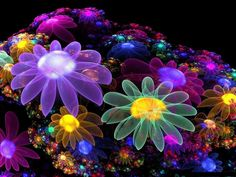 Colorful flowers designs 3d wallpaper