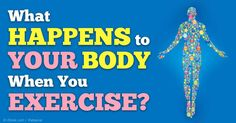 Learn how you can minimize your fitness losses during exercise hiatus. Here are some tips to help you stay fired up during exercise. http://fitness.mercola.com/sites/fitness/archive/2014/12/19/minimize-fitness-losses-during-exercise-hiatus.aspx