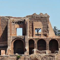 Ruins of the Domus Augustana on Palatine Hill seen from across the Circus Maximus in Rome, Italy.  by Atelier Teee