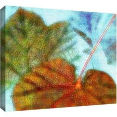 Dean Uhlinger Fall Floating Gallery-Wrapped Canvas, Size: 36 x 48, Brown