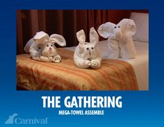 Having fun is part of my paradise.  Coming back from a wonderful dinner to these adorable towel animals is just a part of the cruise that makes you know that Carnival is working at you having a good time :) ~By the end of the week i have a whole zoo saved :P  #travel #towel animals #Carnival