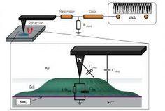 Scanning Microwave Microscopy for Quantitative Imaging of Biological Samples