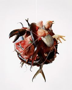 vegetarianism never felt so good. tara sellios photography