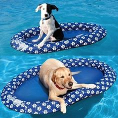 SwimWays Spring Float Paddle Paws in size Large is a great pool float for your dog. Keep your puppy cool while having fun in the pool. Dog Pool Floats, Lake Floats, Pool Fun, Pool Accessories, Pool Toys, Water Toys, 21st Gifts, Large Animals, Home Decor Accessories