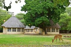 KNP - Letaba - General Thatched Roof, Kruger National Park, Camps, Passport, Places Ive Been, South Africa, African, Birds, Houses