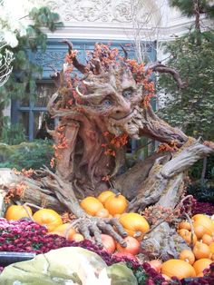 Not exactly gardening, but I want him in my garden!  Kim Graham's giant papier mache tree troll -- now residing at the Bellagio in Las Vegas (photo courtesy of Mary Cottingham).