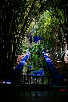 Majorelle garden, Marrakech - Morocco    This place has been property of famous Yves Saint Laurent who entirely restored it marvelously. A dreamy and wonderful place, but difficult to render photographically...    From PentaxForums.com: http://www.pentaxforums.com/forums/post-your-photos/104774-cityscape-glimpses-majorelle-garden-marrakech-morocco.html#ixzz24w2jeAtQ