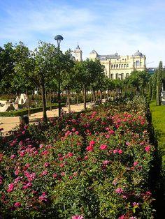 Malaga Rose Garden in Spain.