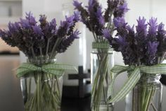 I have so much lavender growing in my yard I don't know why it never occurred to me to bring it inside. They smell beautiful. I made several little arrangements using jars I've been saving. Years ago my sister said always save your dijon mustard jars to use to bring salad dressing on the go.... View the Post