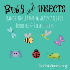 Bugs & Insects Activities for Toddlers & Preschoolers