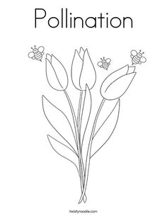 Pollination Coloring Page - Twisty Noodle Coloring Pages Nature, Spring Coloring Pages, Flower Coloring Pages, Coloring Pages For Kids, Kids Prints, Food Coloring, Noodle, Worksheets, School