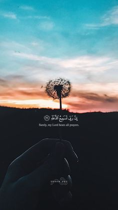 """New Inspirational Quotes """"Indeed, My Lord is surely hearing for the prayers! Quran Quotes Love, Quran Quotes Inspirational, Beautiful Islamic Quotes, Arabic Quotes, Quran Verses About Love, Beautiful Quran Verses, Best Islamic Quotes, Islamic Qoutes, Text Quotes"""