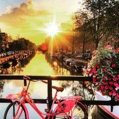 Boooolll güneşli bir günümüz olması dileğiyle günaydın #bisiklet #bisikletsevenler #bisikletözgürlüktür #bisikletturu #bisikletliulasim #bike #bicycle #cycling #güneş #günaydın #nehir #çiçek #manzara #gunaydin #günemerhaba