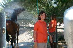 campamentos con caballos. Alcantaraecuestre.con con Alfonso lopez de Carrizosa a la cabeza, organiza unos campamento para jovenes en verano que son una maravilla para los que amen a este animal. Son en Julio.