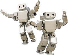 Google Image Result for http://www.digitaltrends.com/wp-content/uploads/2009/11/humanoid-robots.jpg