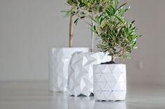 GROWTH, origami planter, Studio Ayaskan