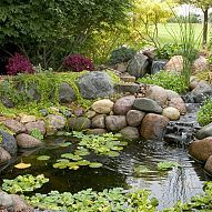 A pond or water garden doesn't have to be large to be enjoyable or bea… :: Hometalk