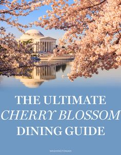 Where to Eat Before and After You Visit the Cherry Blossoms | Washingtonian