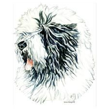 Old English Sheepdog by - CafePress Black Shih Tzu, Puppy Drawing, Bearded Collie, Old English Sheepdog, Shih Tzu Puppy, Perler Patterns, Puppies, Sheep Dogs, Drawings