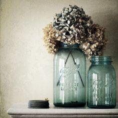 Dried hydrangeas in Ball jars. I love Ball jars! Vintage Mason Jars, Blue Mason Jars, Bottles And Jars, Glass Jars, Vintage Bottles, Flowers In Jars, Dried Flowers, Flower Jars, Simple Flowers
