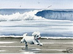 Beach watercolor painting - Bichon Frise - Dogs Make Me Happy