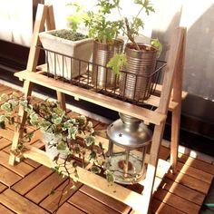 手作りガーデンラック : My Garden~Herbs&Flowers~