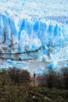 El Calafate is a city in Patagonia, Argentina. It is situated in the southern border of Lake Argentino, in the Southwest part of the Santa Cruz Province, about 320 km Northwest of Río Gallegos. El Calafate is an important tourist destination as the hub to visit different parts of the Los Glaciares National Park, including the Perito Moreno Glacier and the Cerro Chaltén and Cerro Torre.