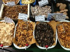 Visit THE MUSHROOM MAN in Portobello Market just north of Talbot Road - over 20 fresh foraged and cultivated varieties. Alongside the produce, there are many specialist food stalls, especially on Fridays and Saturdays when baked goods, oils, olives, gourmet cheeses, meat, seafood and much more are on display.