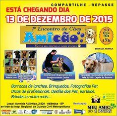 BONDE DA BARDOT: Adoção de cães e vacinação antirrábica grátis em grande evento na Zona Sul de São Paulo neste domingo (13/12)