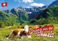 Grüezi aus der Schweiz (Alpenblick) | Urlaubsgrüße | Echte Postkarten online…