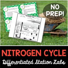 The nitrogen cycle interactive flip book and quiz nitrogen students will love you for providing them with a hands on experience when learning about the nitrogen cycle the nitrogen cycle station lab is a plug and ccuart Image collections