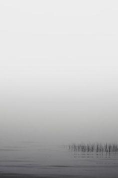 Zak Collins | The Dense White