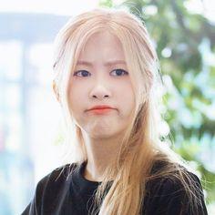 Rose And Rosie, Rose Bonbon, Rose Icon, Homo, Blackpink Memes, Rose Park, Blackpink Photos, Park Chaeyoung, Blackpink Jisoo