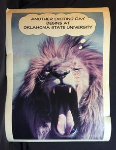 Yawning Lazy Lion Poster Vintage Oklahoma State University OSU 1984 Hallmark Cards Poster Open Mouthed Big Cat Picture