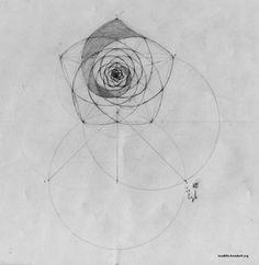 Golden Spiral In Art Golden spiral in pentagon