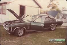Australian Muscle Cars, Aussie Muscle Cars, Ford Falcon, Ford Gt, Falcons, Car Stuff, Cool Cars, Antique Cars, Running